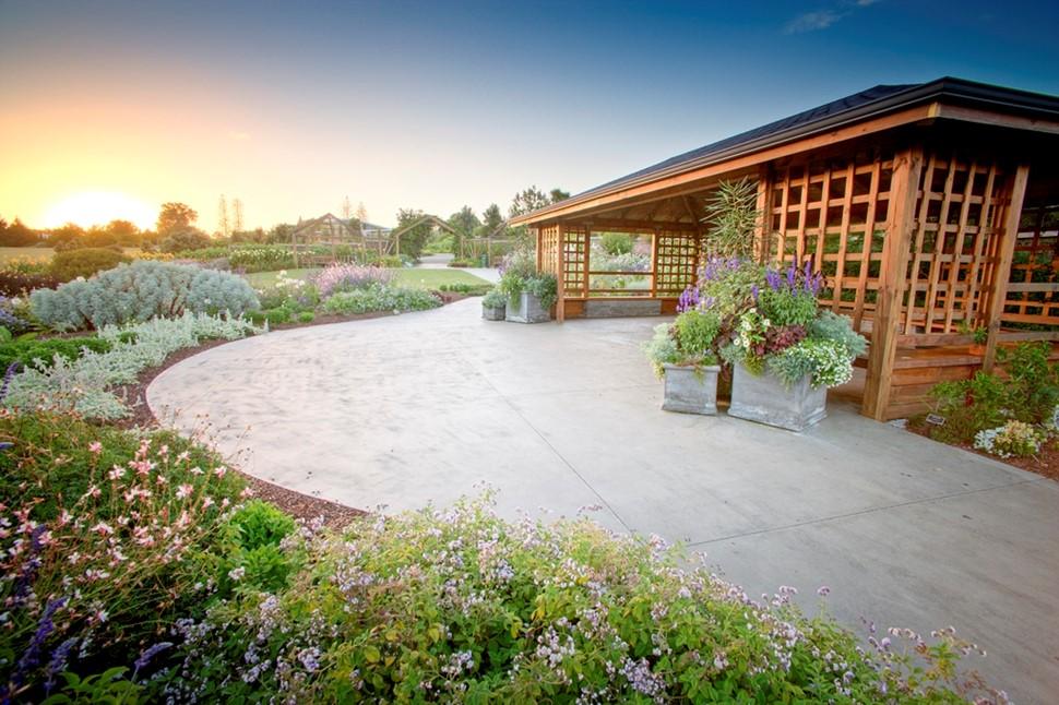 Weddings In The Perennial Garden Auckland Botanic Gardens