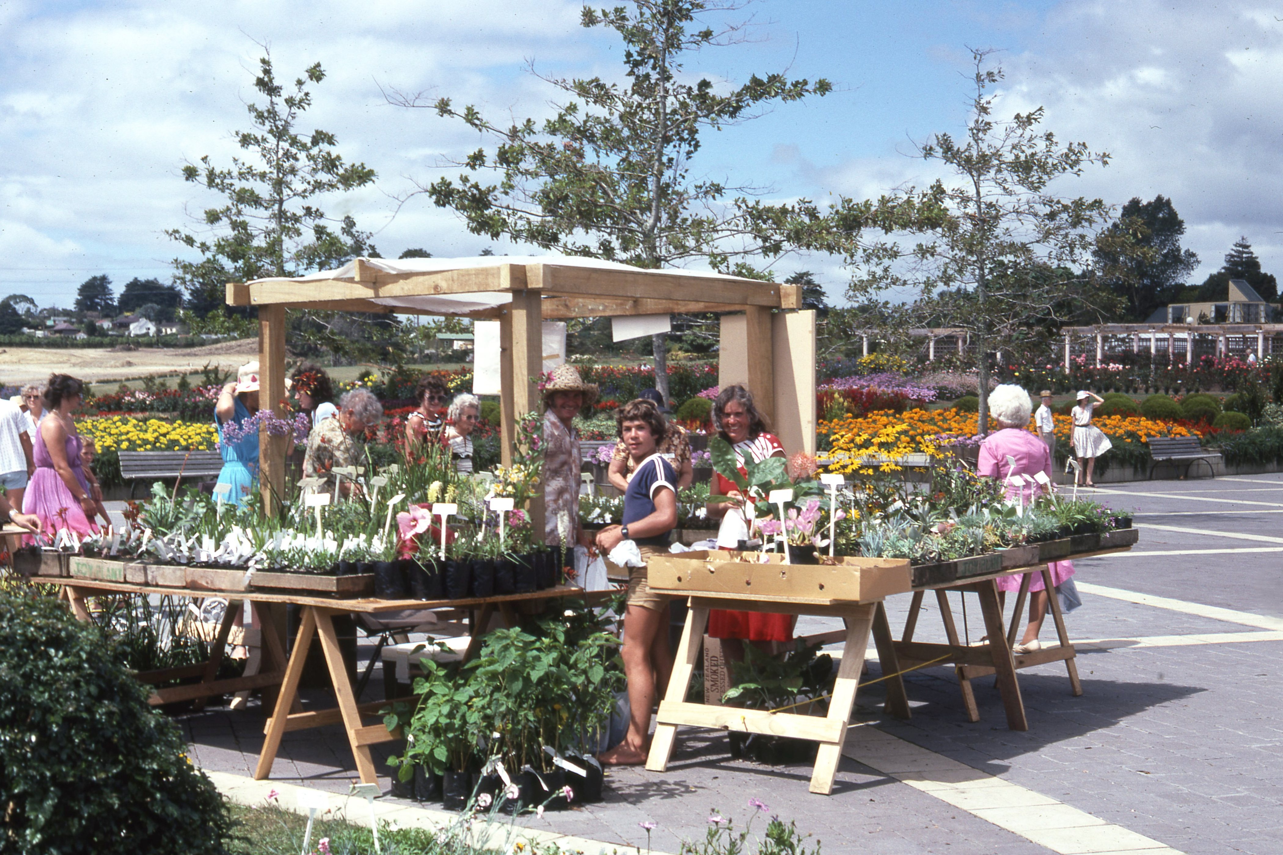 1984. Second anniversary plant sale.