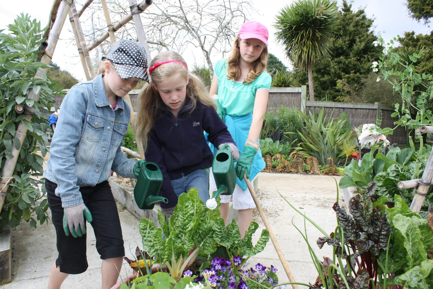 Edible gardening with kids - Auckland Botanic Gardens
