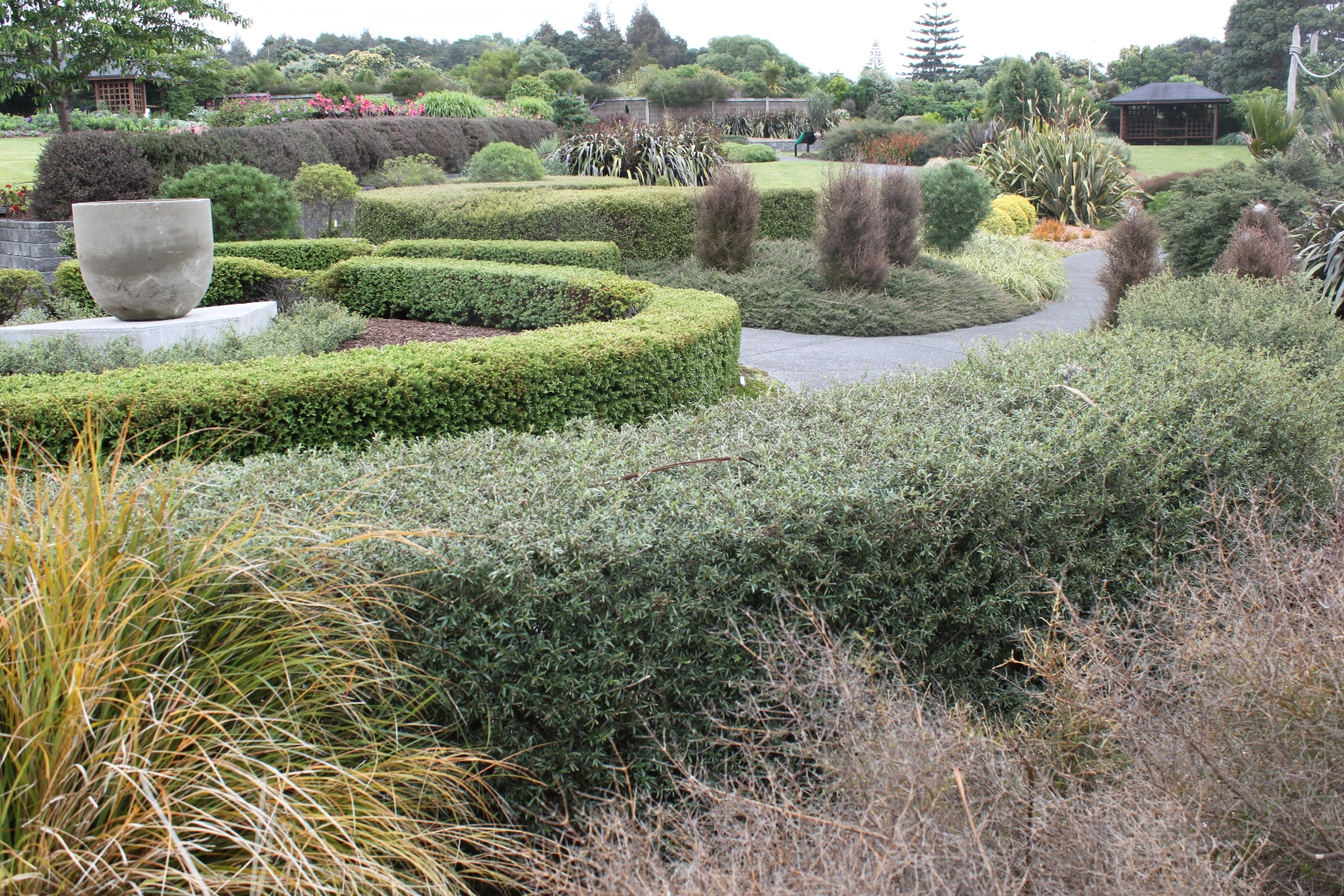 Native plant ideas auckland botanic gardens for New zealand garden designs ideas