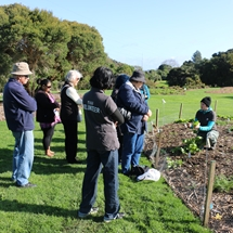 Our staff discussing compost and edibles with our volunteers