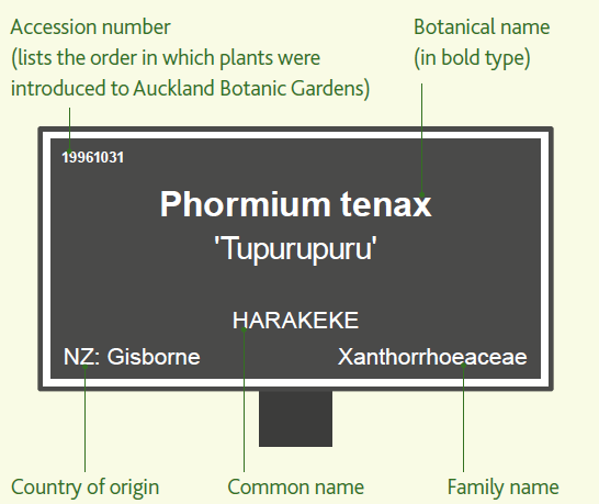 Plant label.PNG